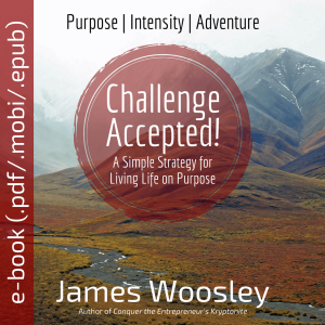 Challenge Accepted e-book