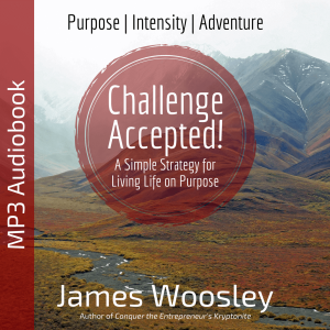 Challenge Accepted Audiobook